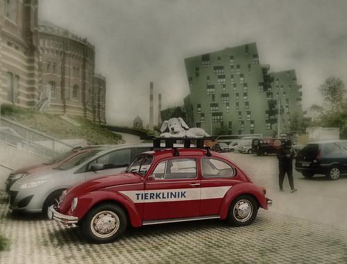 Dog on the Beetle - another red car with an animal - way home from work - Hund auf dem Käfer  - wieder rotes Auto, diesmal VW mit einem Tier auf dem Dach - Weg von der Probebühne nach Hause in der Pause zwischen Vormittags- u. Abendprobe Karlos 23.10.2018