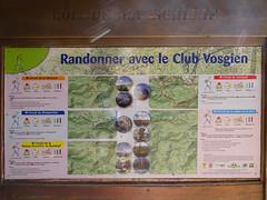 Petite randonnée vosgienne - Photo of Reinhardsmunster