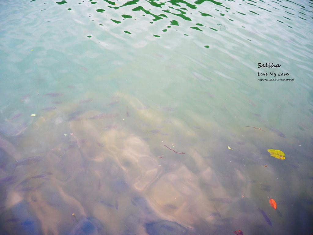 宜蘭三星兩天一夜一日遊景點推薦長埤湖清水地熱谷附近景點 (11)