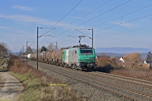 BB 37060 Train 489058 Sibelin -Mulhouse Nord à Retzwiller