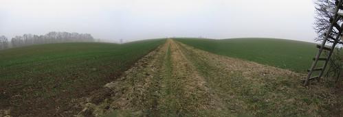 20110316 0203 344 Jakobus Weg Feld Nebel Leiter_P01