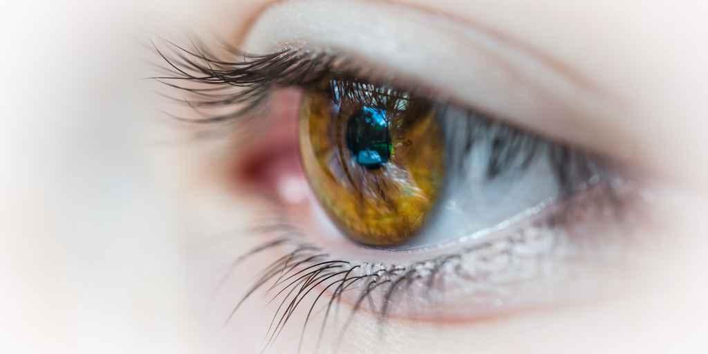 oeil-gènes-liés-dégénérescence