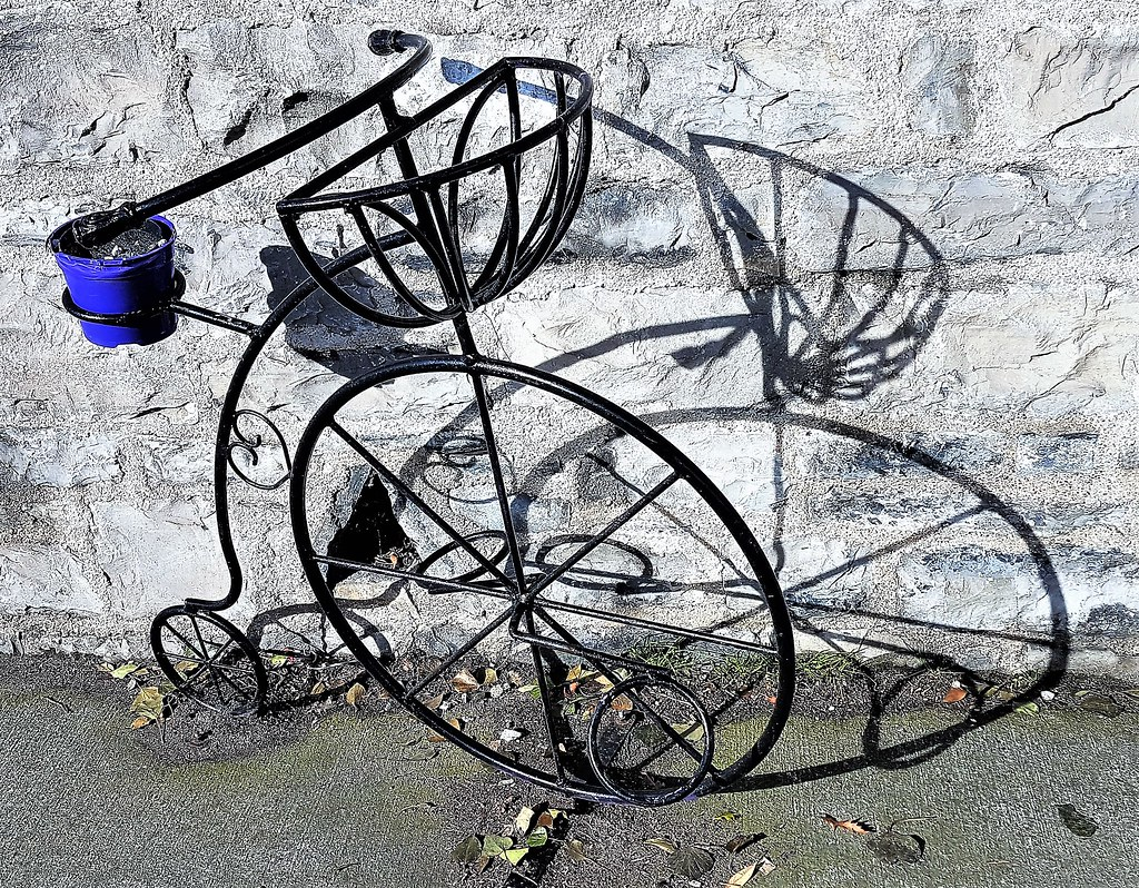 Penny Farthing Planter Drumcondra Download Photo Photo Search Engine