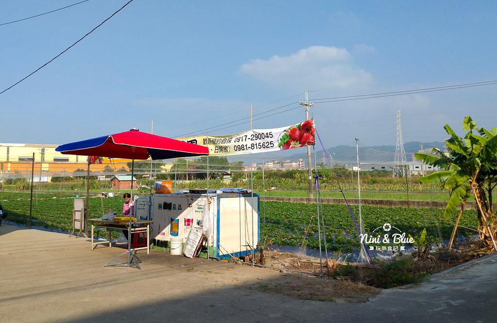 小農夫草莓園09