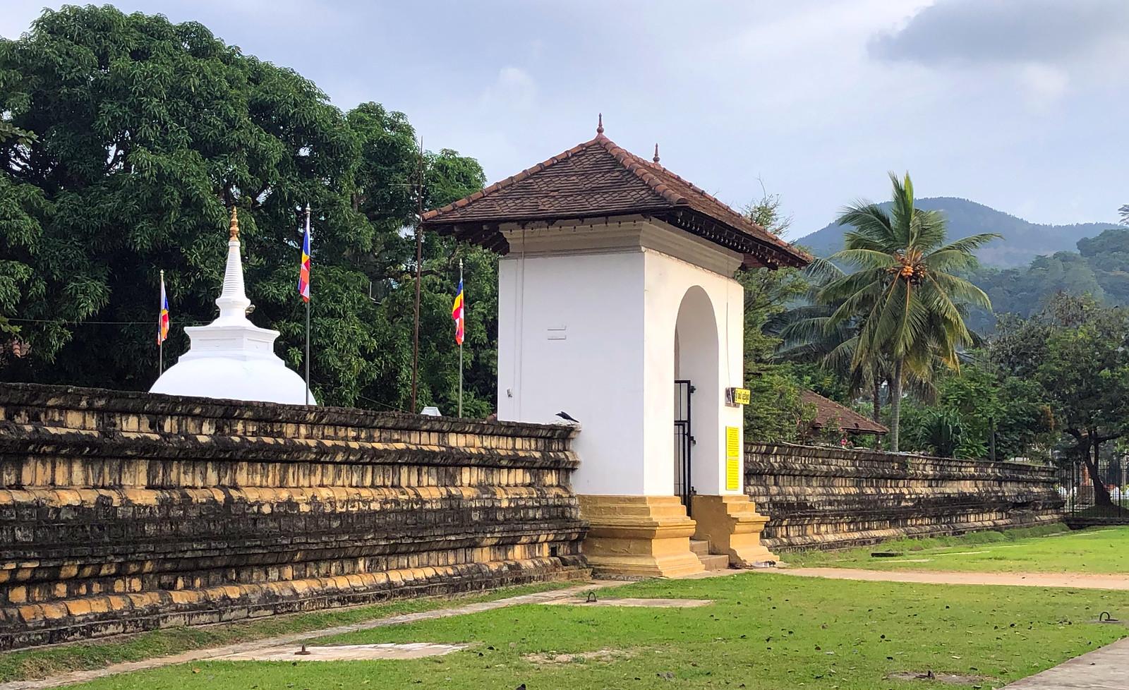 Kandy en un día, Sri Lanka kandy en un día - 46151971595 9e4f71192d h - Kandy en un día, Sri Lanka