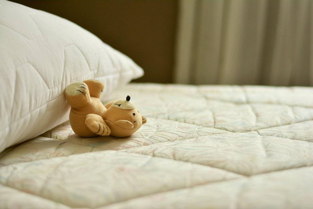 寝てるクマ