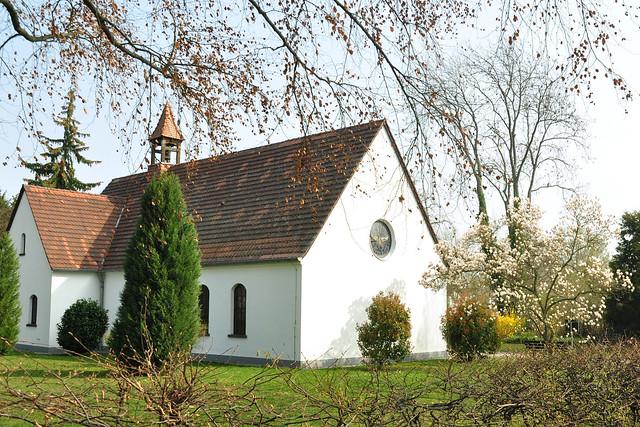 März 2019 ... Magnolienblüte in Neckarhausen: a) neben der Friedhofskapelle b) im Schlossgarten ... weiße und purpurrote Magnolienblüten ... Fotos: Brigitte Stolle
