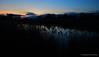 Crépuscule au bord de l'eau