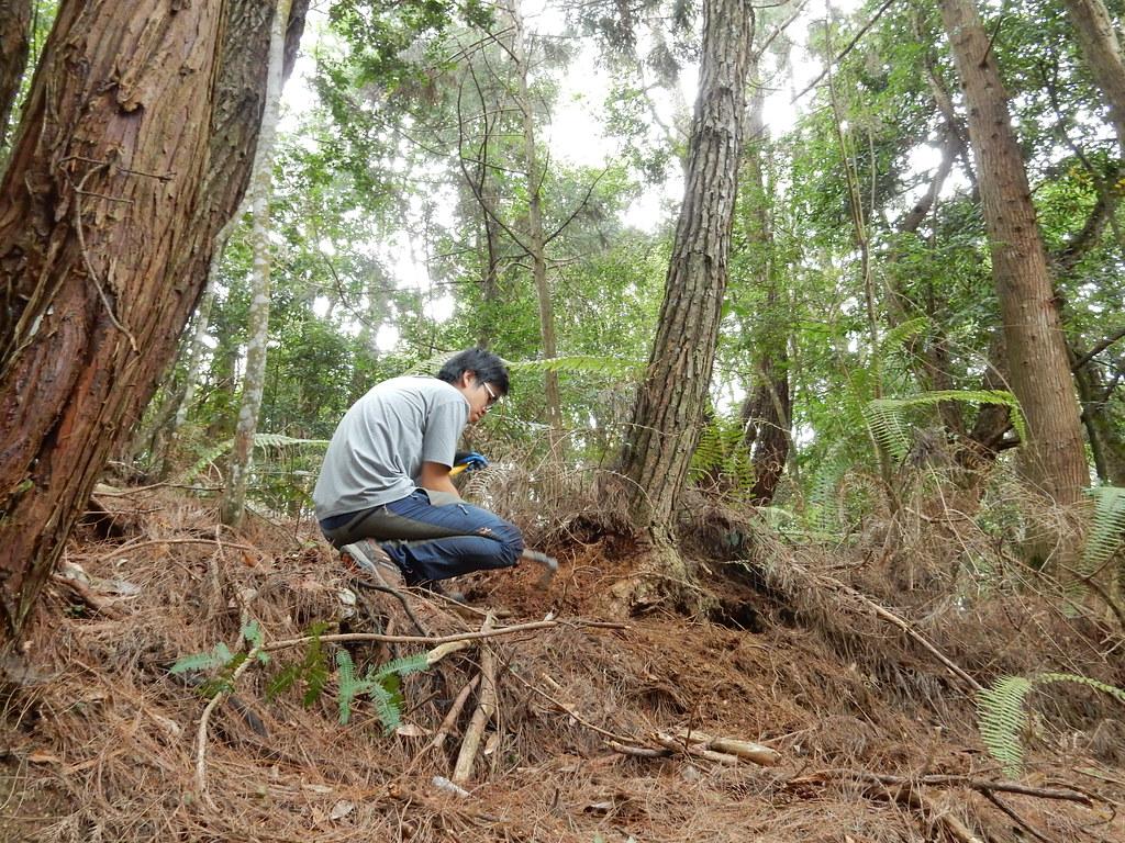 研究人員野外調查除了靠資料,還有一連串的摸索,和一點運氣。林試所提供