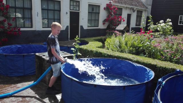foto 2.extra - René Grootscholten - Tijdens een koi-show wordt er veel water ververst. Dat komt omdat het water niet gefilterd wordt.