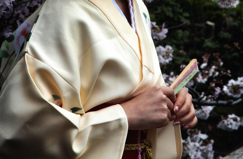 A Kimono, A Fan & Cherry Blossom