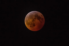Lunar Eclipse -  - 012119 - 013932