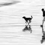 A Run on the Beach by Paul Lambeth