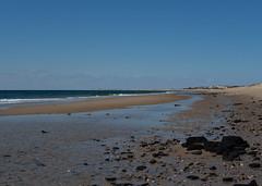 herring cove beach - beach 1