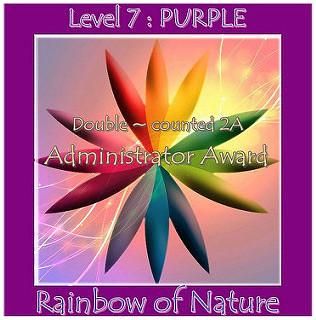 Rainbow Admin Level 7