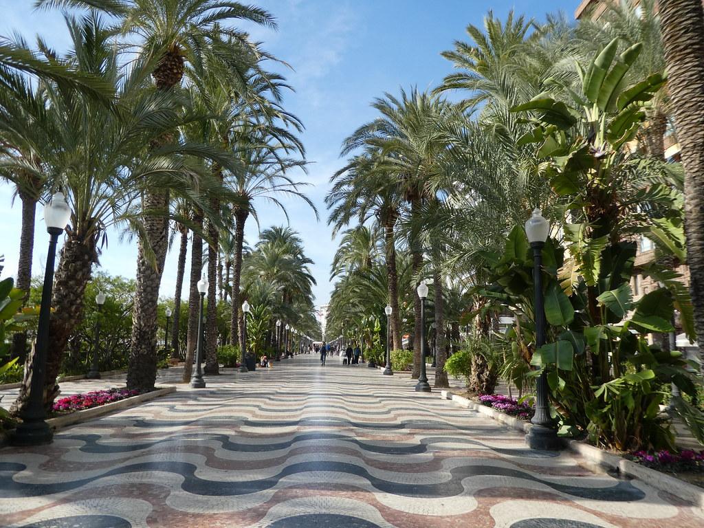 Esplanada d'Espana Alicante