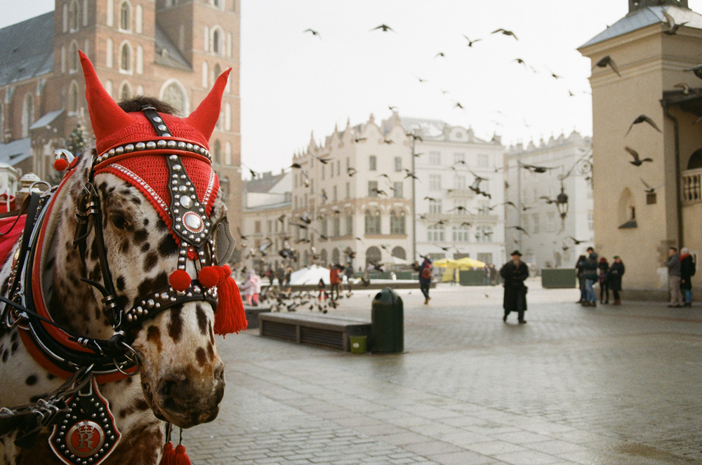 17---A-horse-in-red,-Krakow