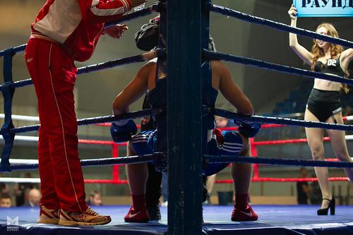 Бокс командный чемпионат России