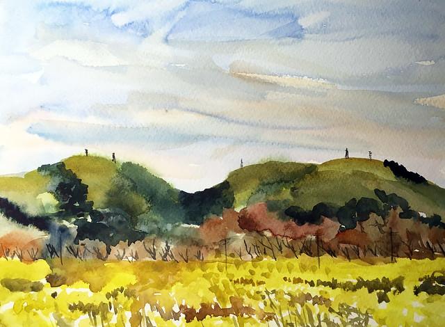 190316 Mustard in Morgan Hill