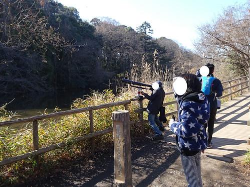 石神井公園の三宝寺池