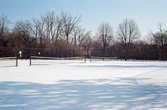 Snow Courts