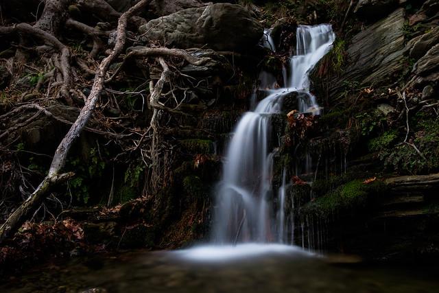 Autumn Mystic, Fujifilm X-E2, XC16-50mmF3.5-5.6 OIS