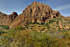 Greens, Browns and Blues (Big Bend National Park)