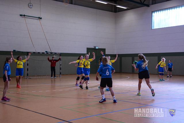 20190223 Laager SV 03 Handball wJD - SV Pädagogik Rostock (45).jpg