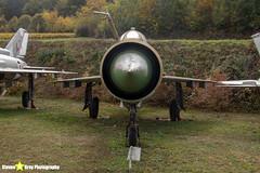 2343---96001091---German-Air-Force---Mikoyan-Gurevich-MiG-21MF-75---Savigny-les-Beaune---181011---Steven-Gray---IMG_5627-watermarked
