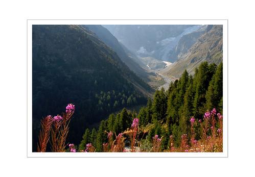 043_Mont Collon_1