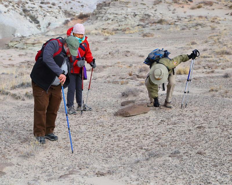 IMG_6132  Guided Backcountry Hike: Siltstone