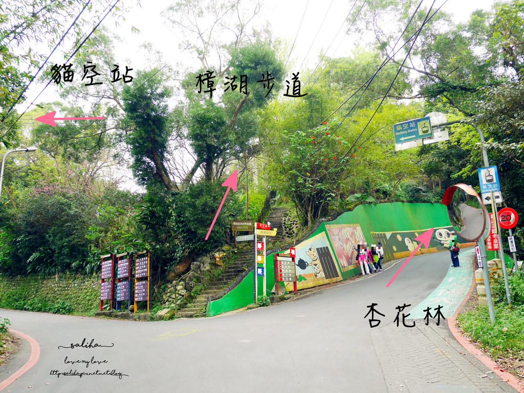 台北貓空一日遊爬山景點樟湖步道 (1)