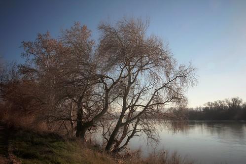 Riverbank land.