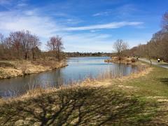 Lake Artemesia in Early Spring