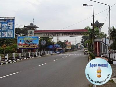 Stokis Agen QnC Jelly Gamat Purbalingga, Bojongsari, Kutasari, Kejobong