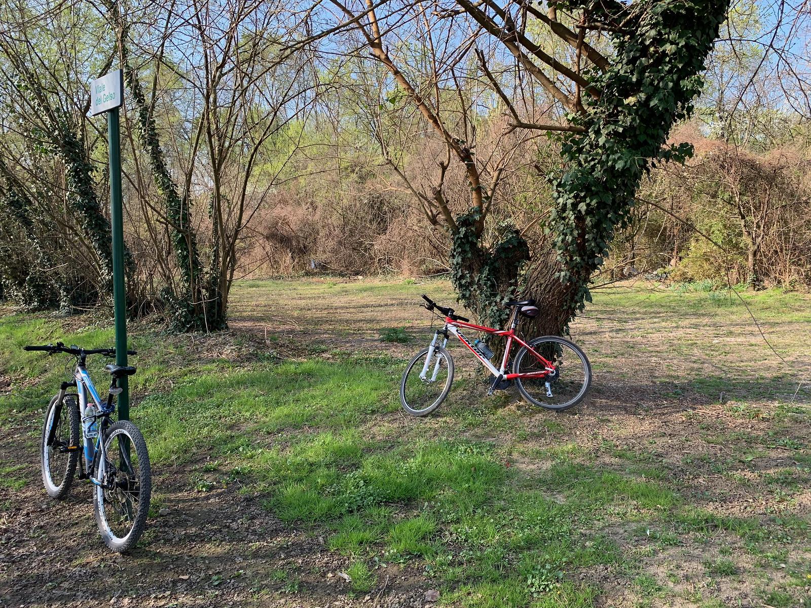 Biciclettiamo in Armonia