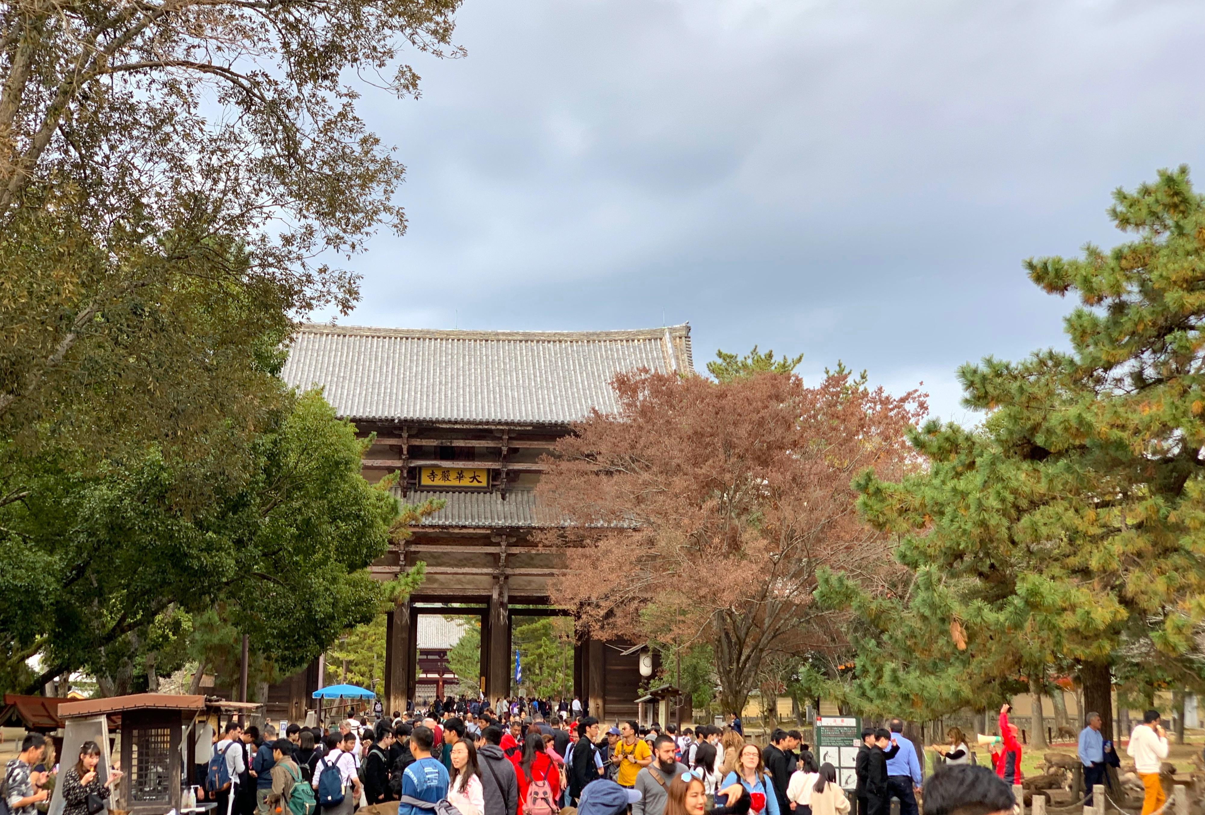 Nara, Japan 2018 343