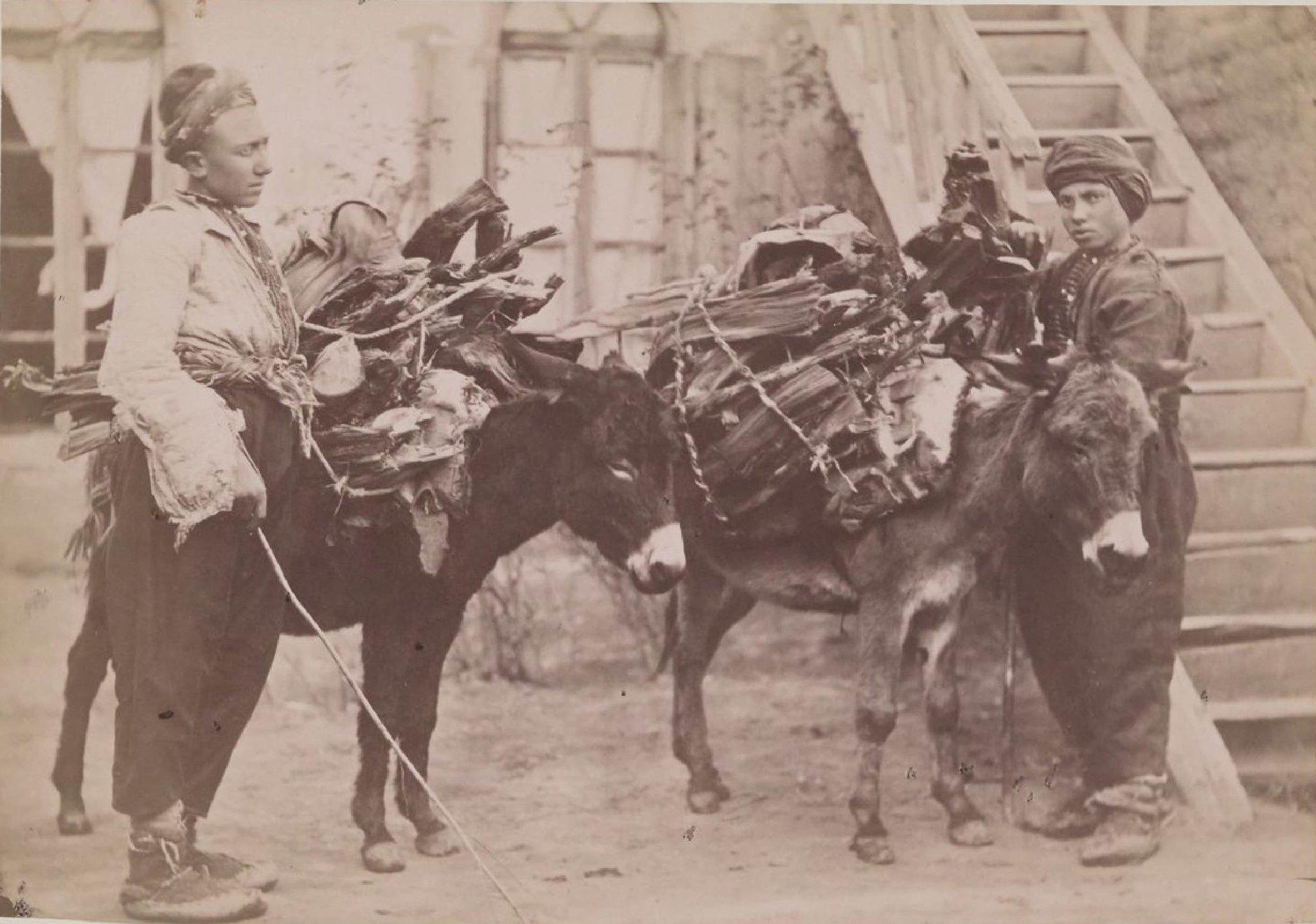 10. Карсская область.  Дровосеки в Кагызманском округе