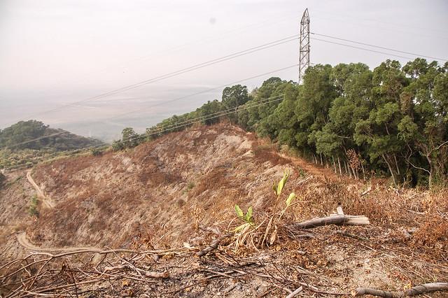 登山口俯瞰千金湖山(輸電塔左側山頭)