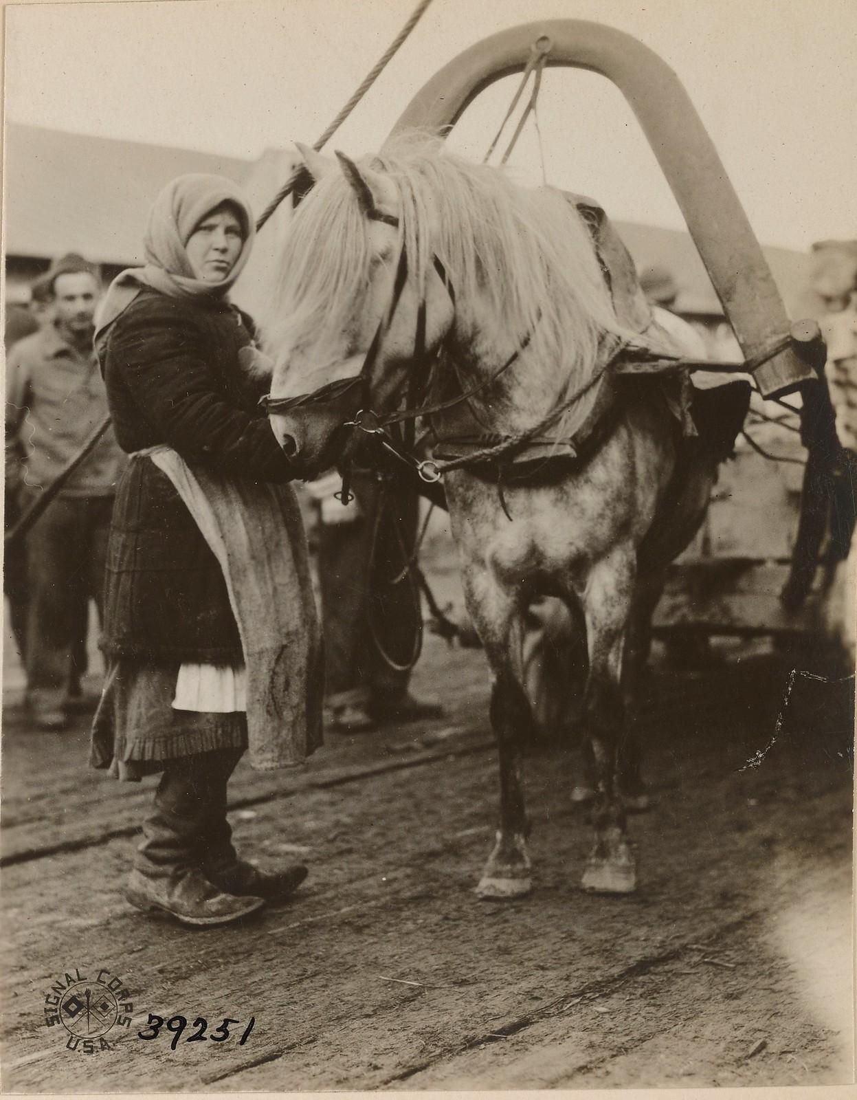 05. Бакарица. Русская женщина с подводой для перевозки снаряжения