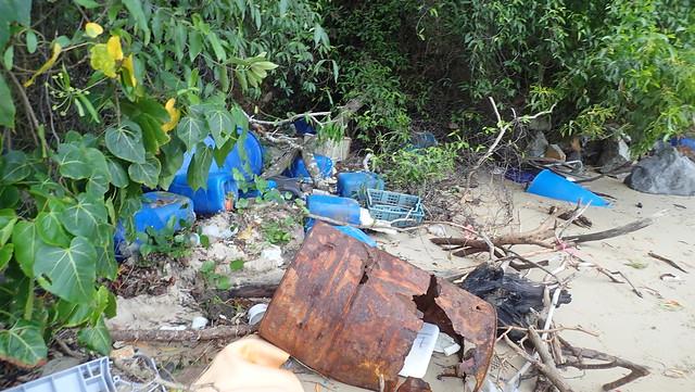 Litter on Chek Jawa northern shore, Jan 2019