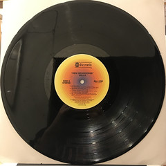 DELLS:NEW BEGINNINGS(RECORD SIDE-A)