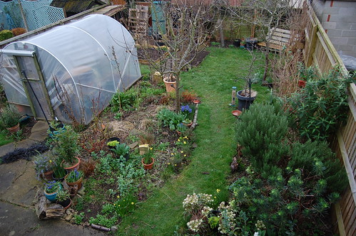 Looking Down on the Back Garden - March 2019