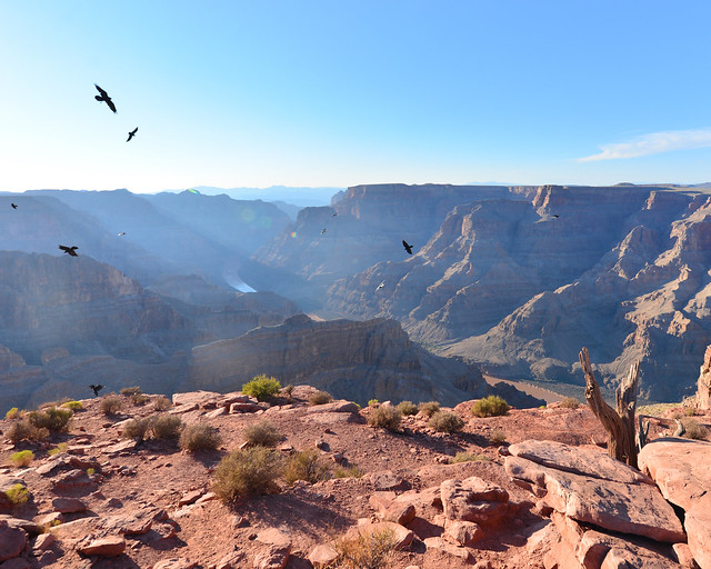 Vistas del Gran Cañón desde el mirador Guano Point
