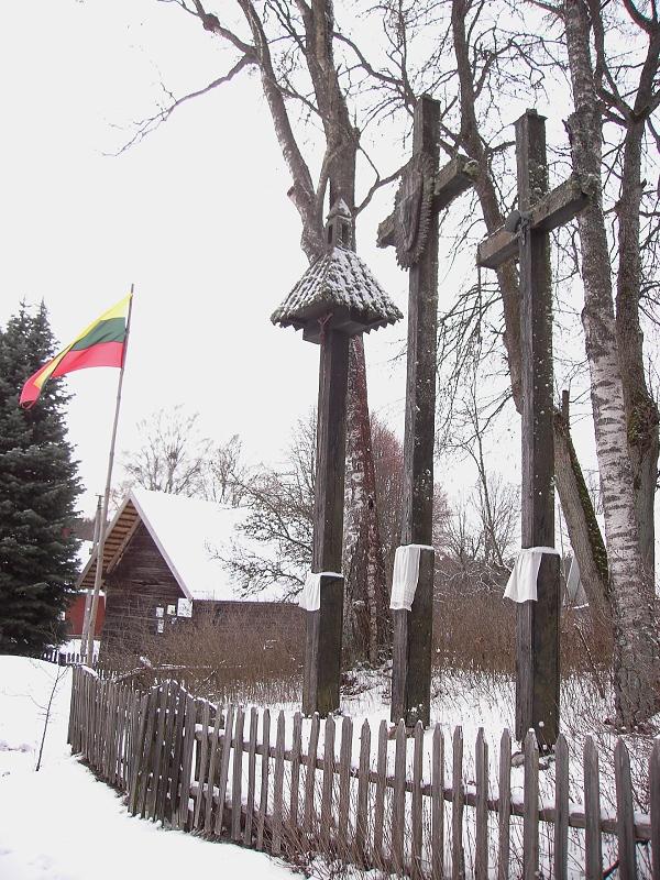 ZervU-190120-03