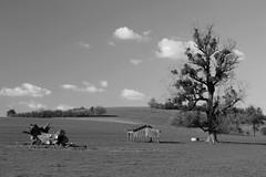 Trois états du bois - wooden things - Photo of Neuvelle-lès-Voisey