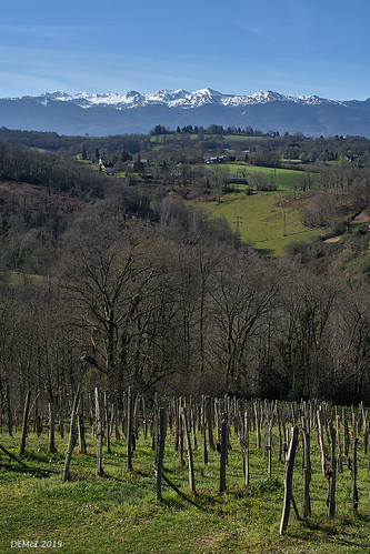 The Pyrénées-Atlantiques viewed from near Gan.