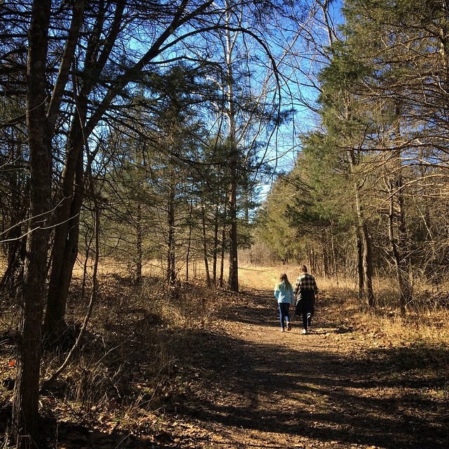 Busiek State Forest