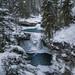 Johnston Canyon in winter.(Banff NP, Alberta, Canada) by Sveta Imnadze