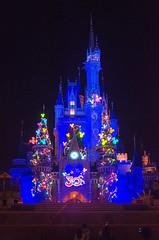 Photo 19 of 20 in the Day 14 - Tokyo Disneyland and Tokyo DisneySea album